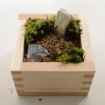 4:苔を貼る